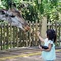 0218-Singapore Zoo-17.jpg