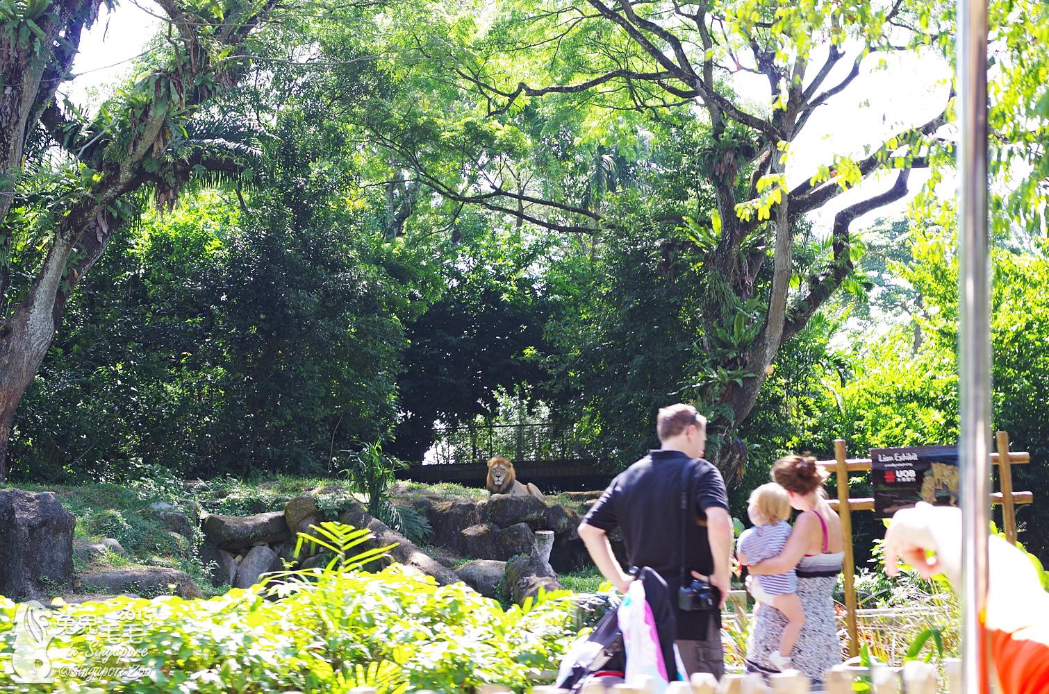 0218-Singapore Zoo-24.jpg