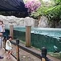 0218-Singapore Zoo-48.jpg