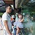 0218-Singapore Zoo-49.jpg