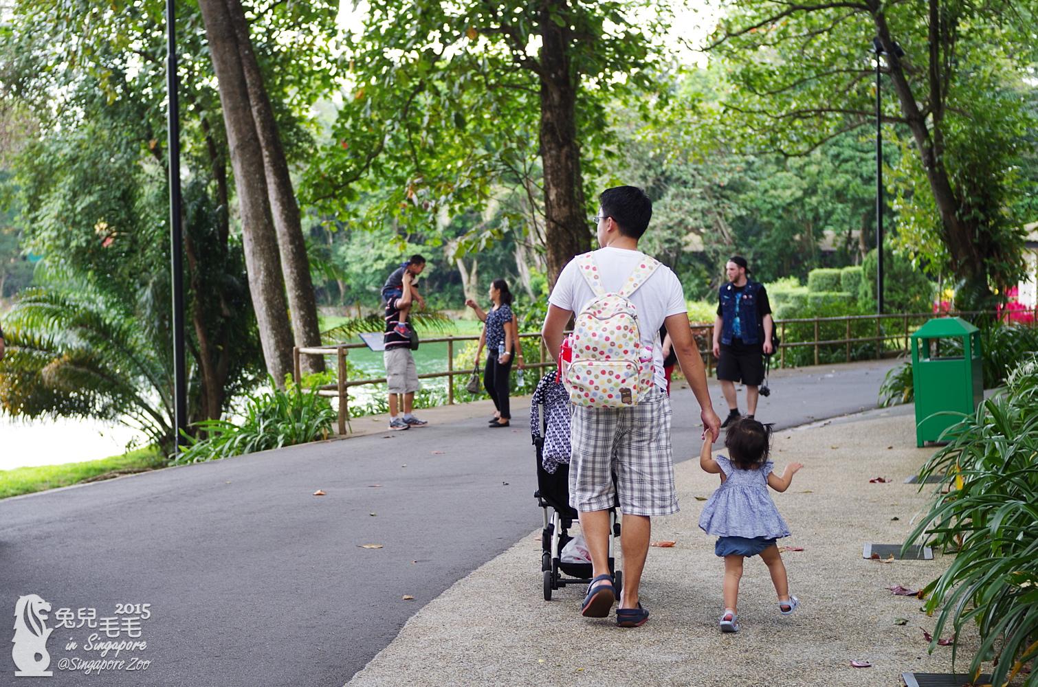 0218-Singapore Zoo-52.jpg