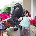 0218-Singapore Zoo-54.jpg