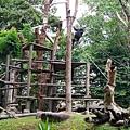 0218-Singapore Zoo-56.jpg