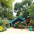 0218-Singapore Zoo-71.jpg