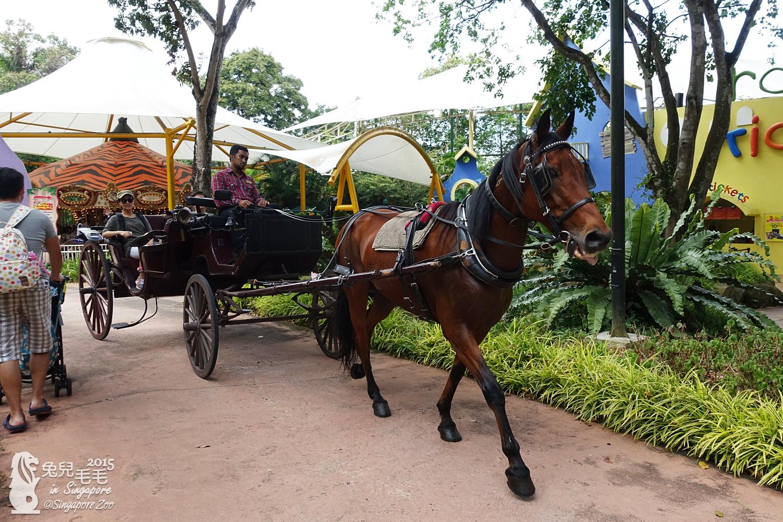 0218-Singapore Zoo-81.jpg