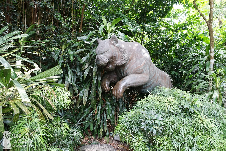 0218-Singapore Zoo-85.jpg