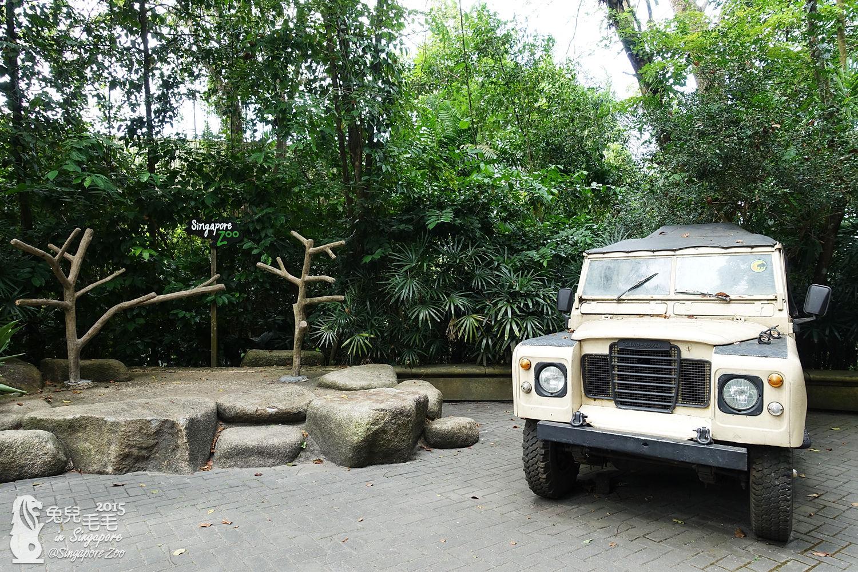 0218-Singapore Zoo-89.jpg