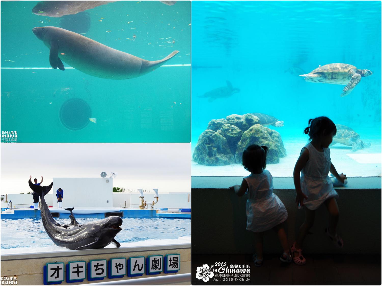 2015-0405-沖縄美ら海水族館-42_Fotor_Collage