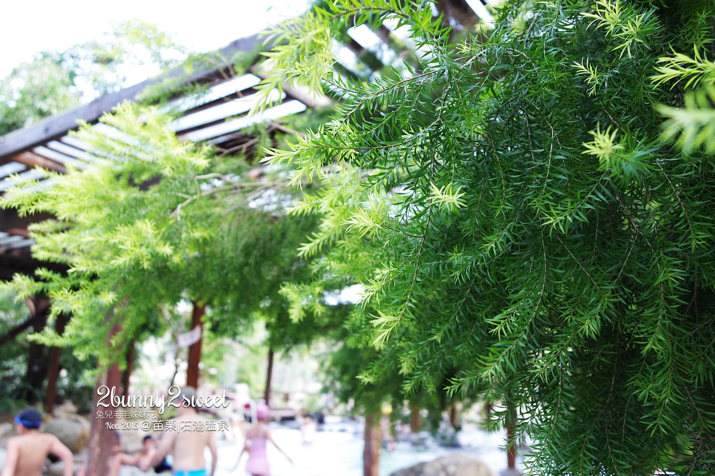 2015-1108-石湯溫泉-14.jpg