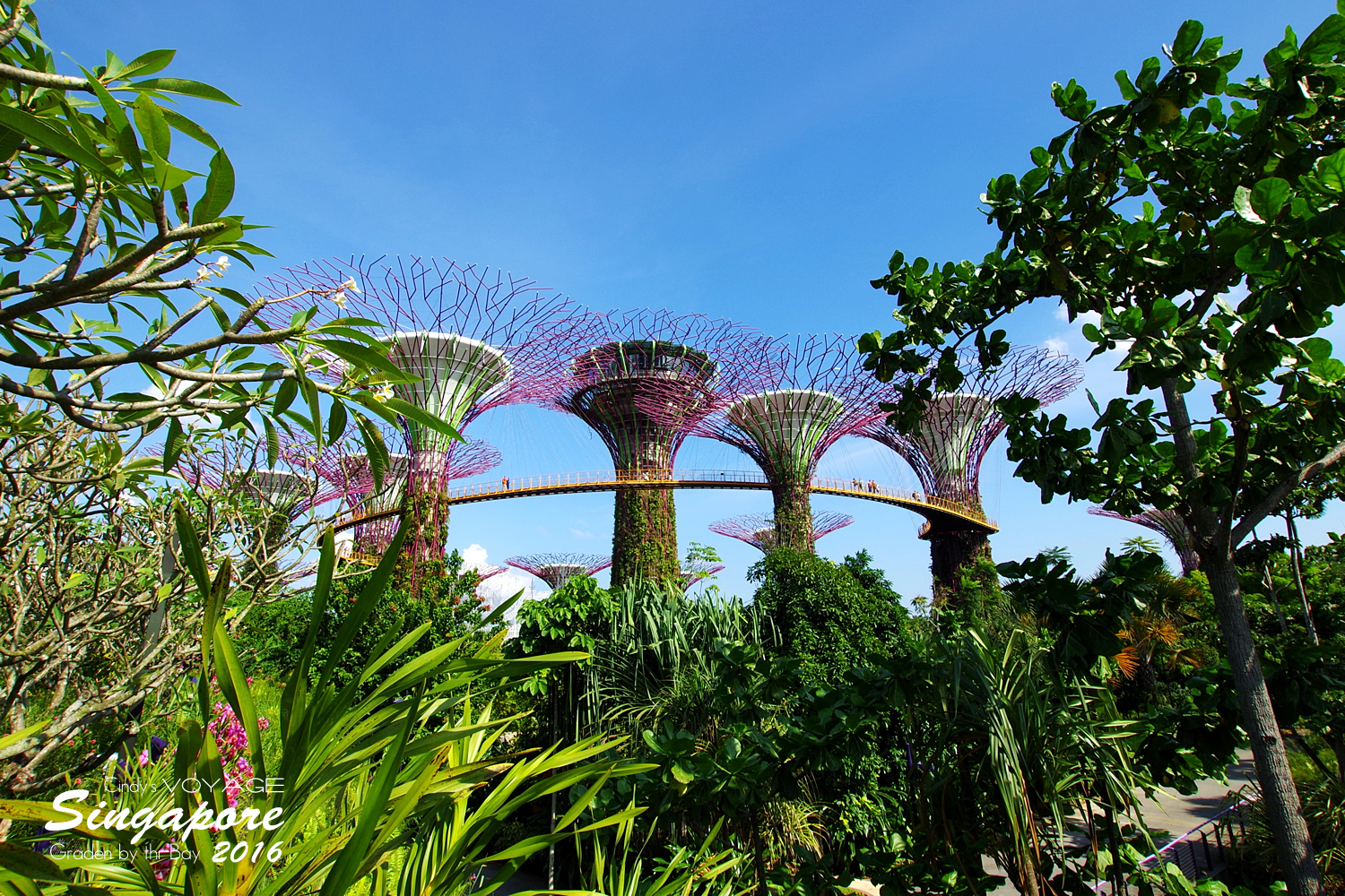 2016-Garden By the Bay-04.jpg