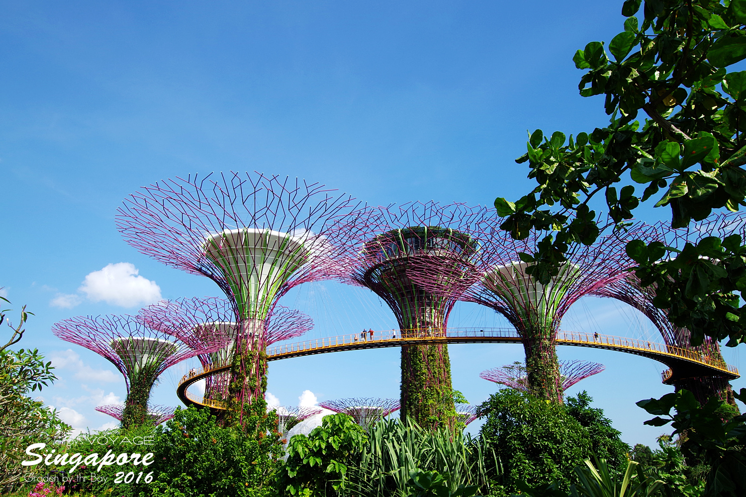 2016-Garden By the Bay-05.jpg