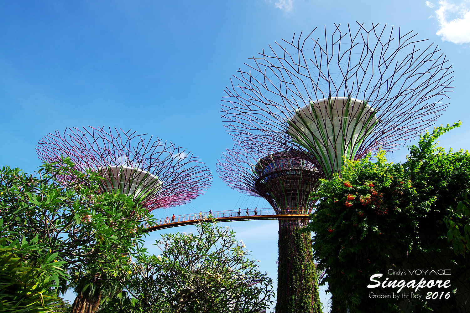 2016-Garden By the Bay-08.jpg