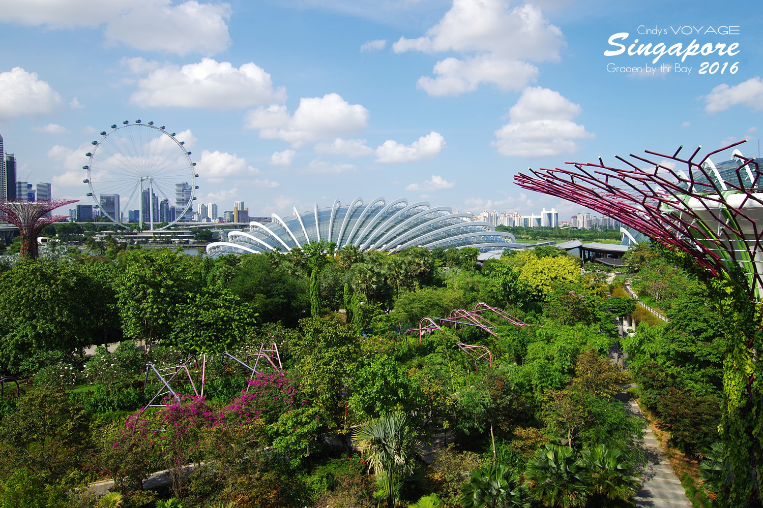 2016-Garden By the Bay-13.jpg