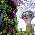 2016-Garden By the Bay-25.jpg