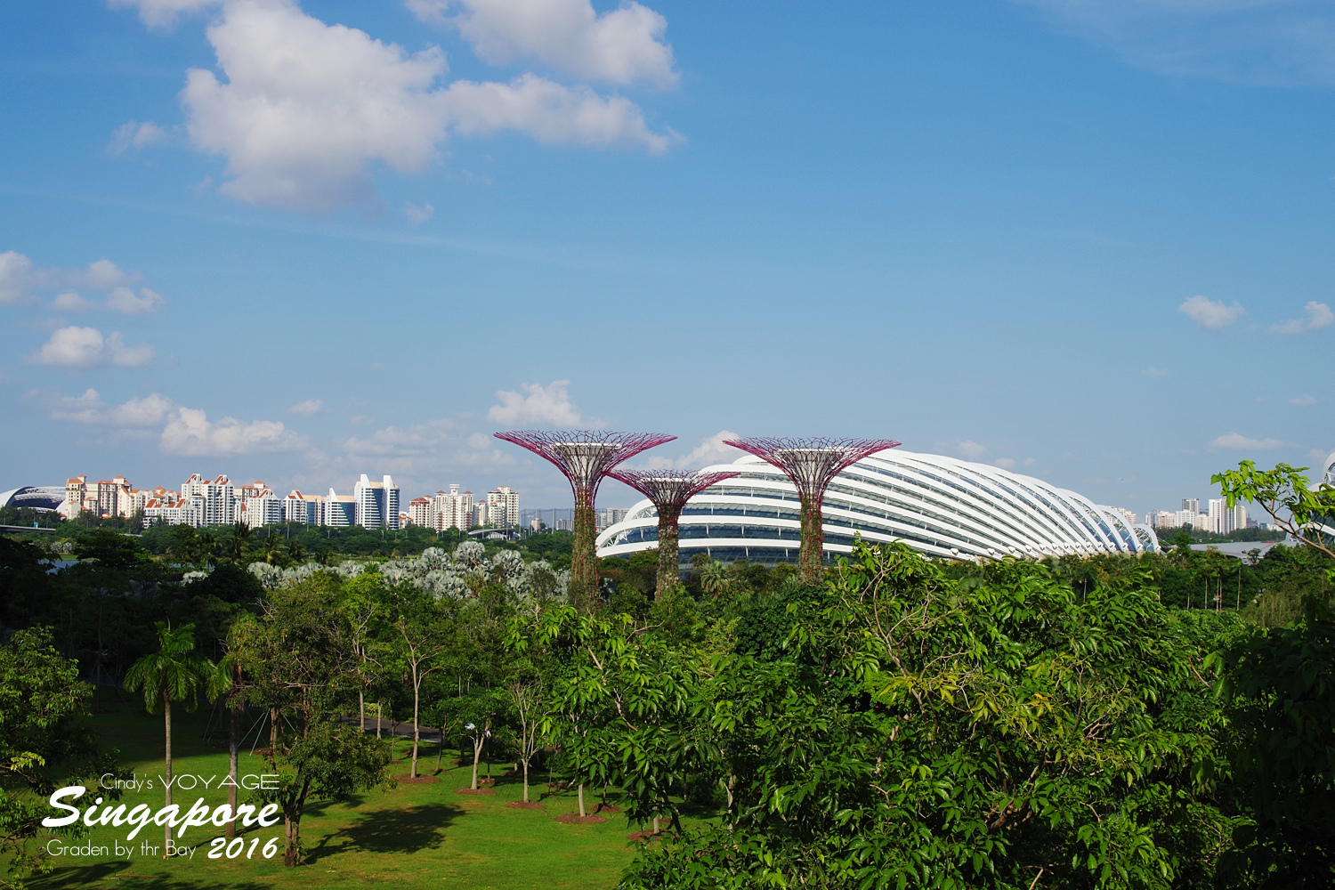 2016-Garden By the Bay-36.jpg