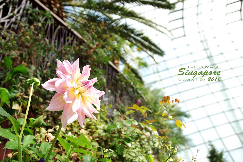 2016-Garden By the Bay-122.jpg
