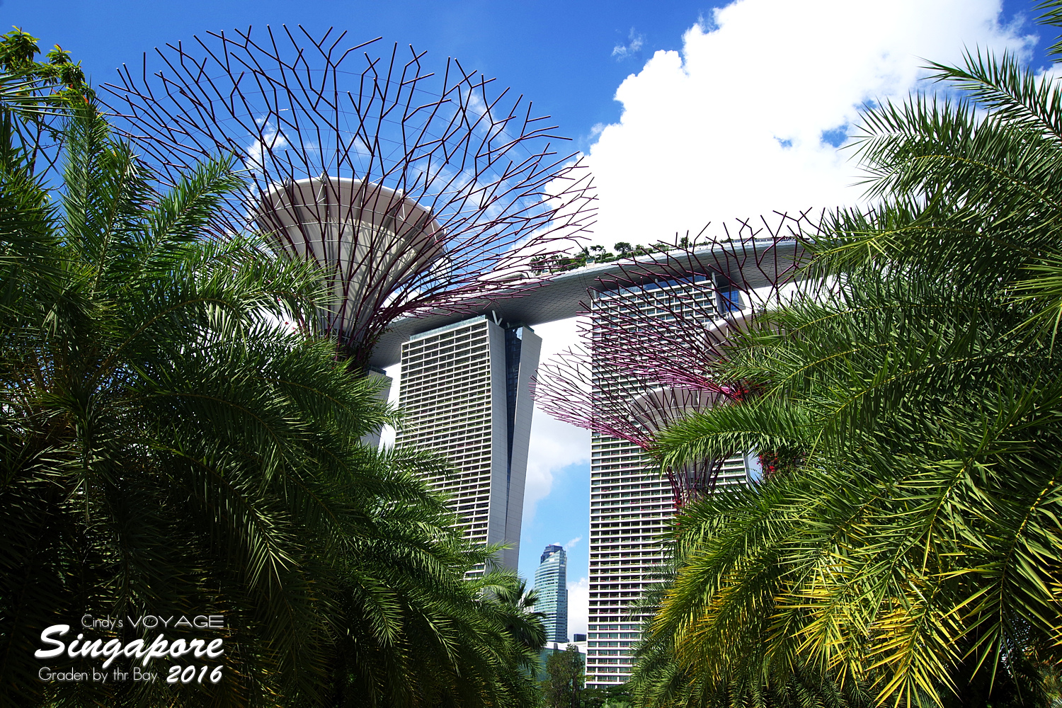 2016-Garden By the Bay-201.jpg