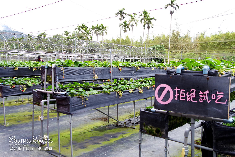 2016-0228-親山農園-02.jpg