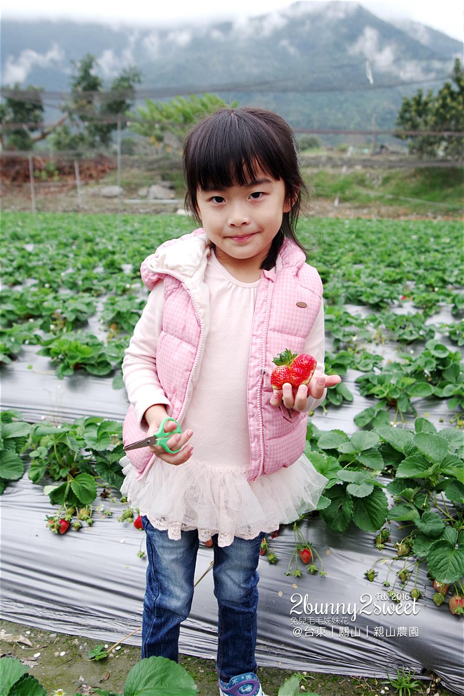 2016-0228-親山農園-08.jpg