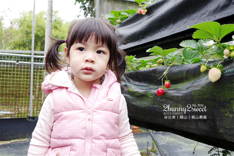 2016-0228-親山農園-10.jpg