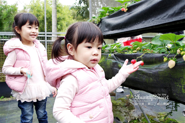 2016-0228-親山農園-11.jpg