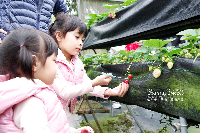 2016-0228-親山農園-12.jpg