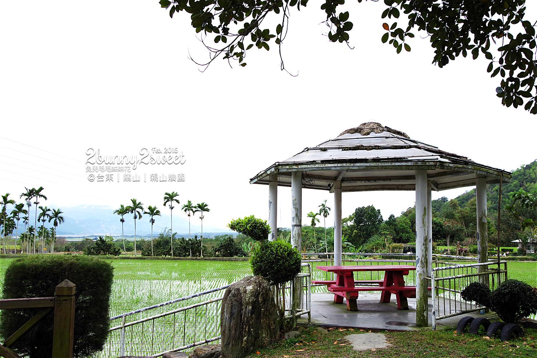 2016-0228-親山農園-20.jpg