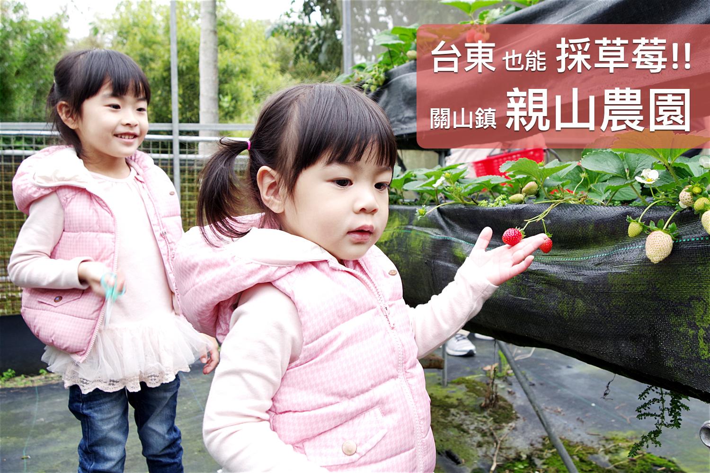 2016-0228-親山農園-25