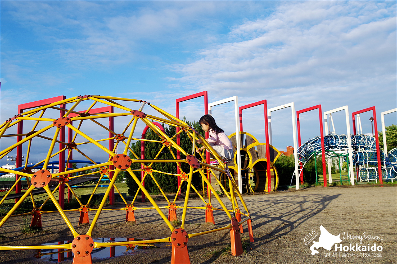 2016-0626-宮の沢ふれあい公園-34.jpg