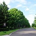 2016-0627-モエレ沼公園-04.jpg