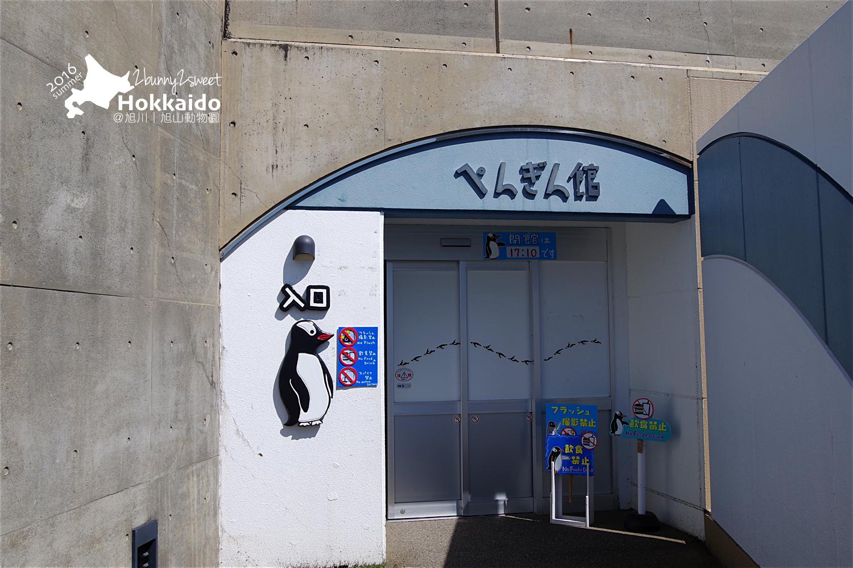 2016-0629-旭山動物園-05.jpg