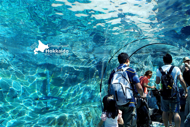 2016-0629-旭山動物園-09.jpg