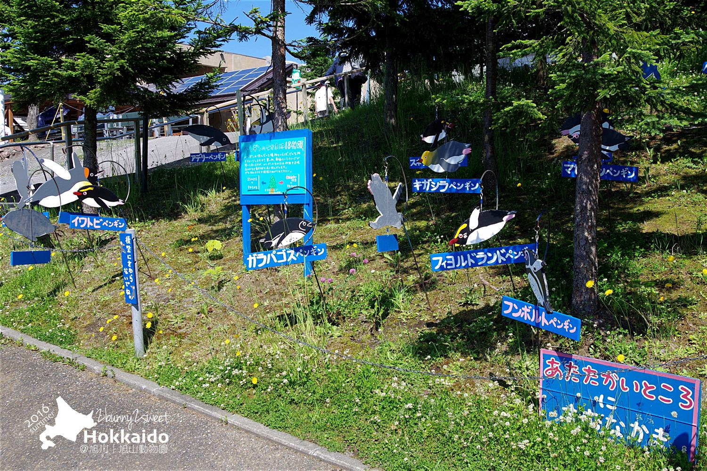 2016-0629-旭山動物園-19.jpg
