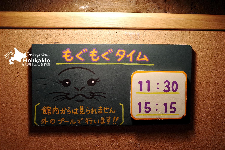 2016-0629-旭山動物園-31.jpg