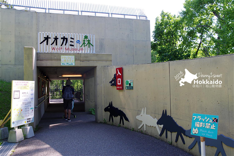 2016-0629-旭山動物園-62.jpg