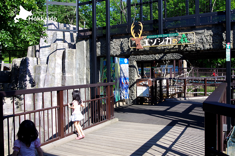 2016-0629-旭山動物園-65.jpg