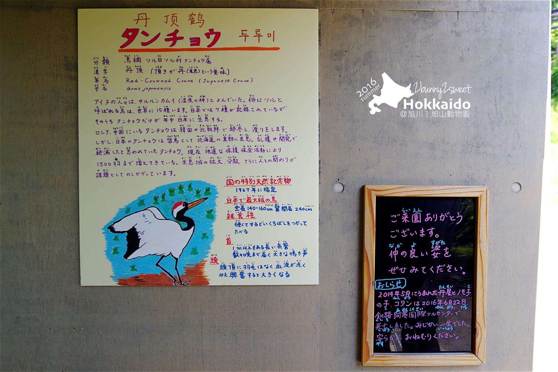 2016-0629-旭山動物園-69.jpg