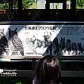 2016-0629-旭山動物園-71.jpg