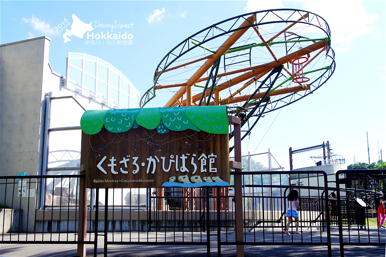 2016-0629-旭山動物園-75.jpg