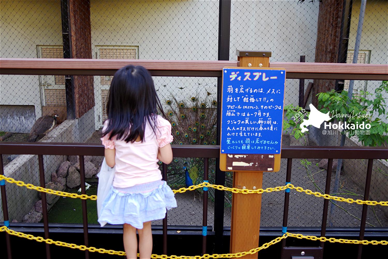 2016-0629-旭山動物園-90.jpg