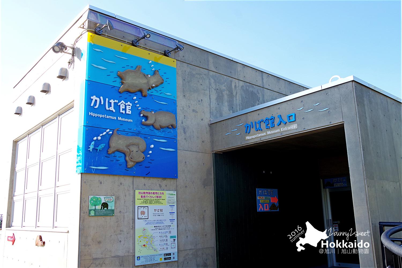 2016-0629-旭山動物園-94.jpg
