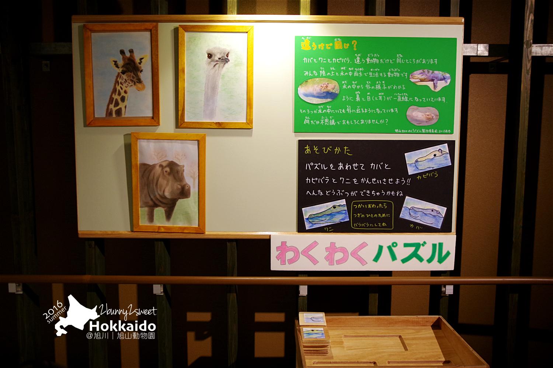 2016-0629-旭山動物園-97.jpg