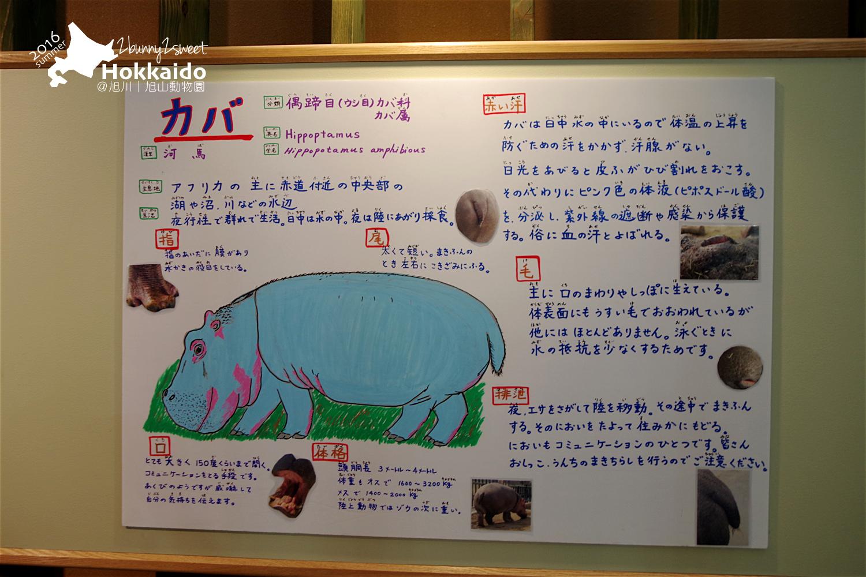 2016-0629-旭山動物園-99.jpg