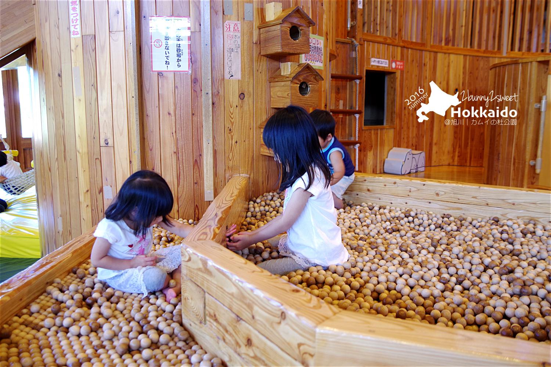 2016-0630-旭山-カムイの杜公園-52.jpg