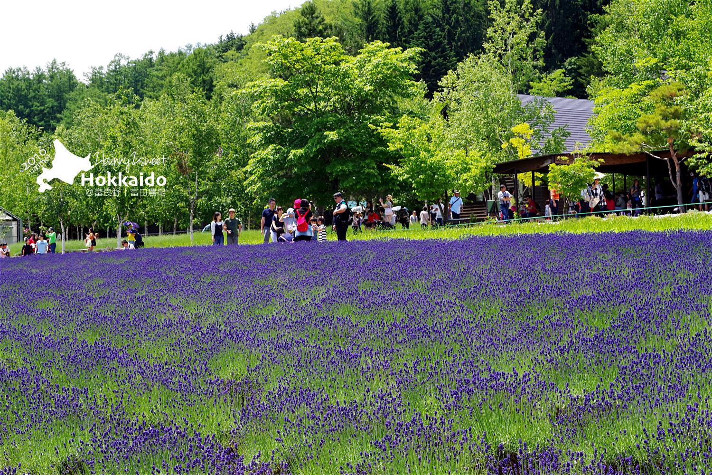 2016-0701-富田農場-19.jpg