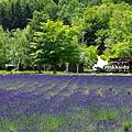 2016-0701-富田農場-31.jpg