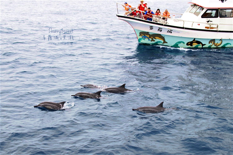 2016-0813-多羅滿賞鯨-10.jpg