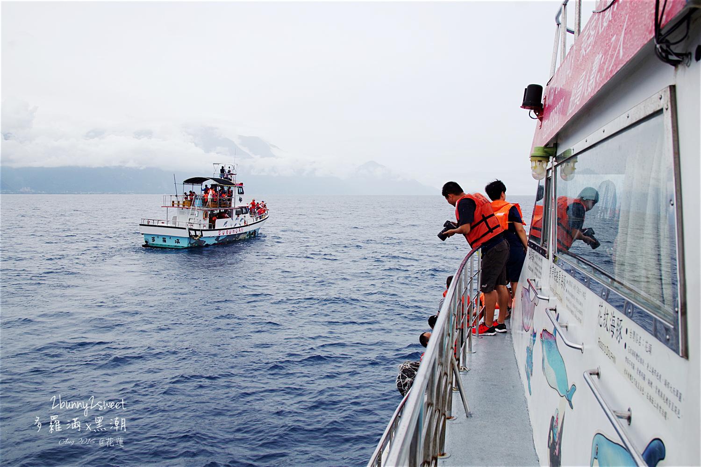 2016-0813-多羅滿賞鯨-12.jpg