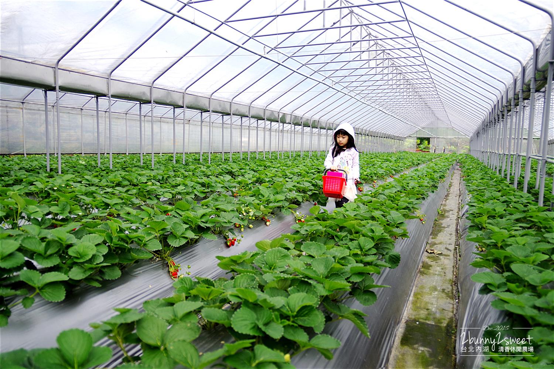 2016-1203-清香休閒農場-09.jpg