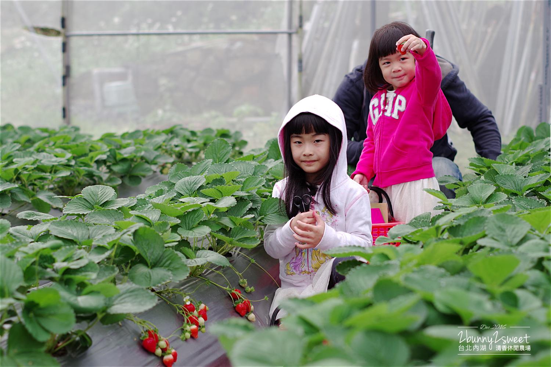 2016-1203-清香休閒農場-13.jpg